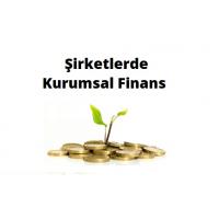 Şirketlerde Kurumsal Finans - Meriç Koçer (Video)